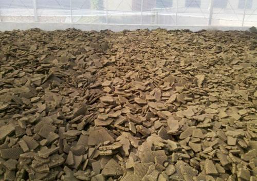 污泥深度脱水技术特点及其应用